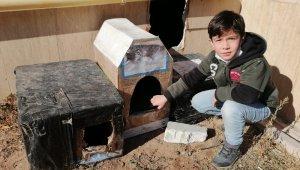 Aksaray'da çocuklar sokak hayvanlarını unutmadı