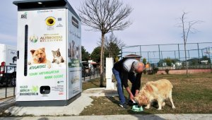 Atık malzemeler, sokak hayvanlarına mama ve barınak olarak geri dönüyor