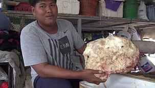 Balıktan dönen adam bulduğu kaya parçası ile 2 milyonluk servete kondu