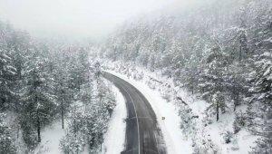 Beyaza boyanan doğa harikası yaylada çamların güzelliği drone ile havadan görüntülendi - Bursa Haberleri
