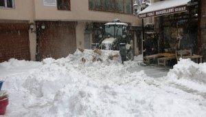 Bitlis'te duraklar, tabelalar, evler kardan kayboldu