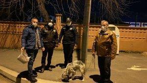 Bu sefer suçlu değil, firari köpeğin sahibini araştırdılar