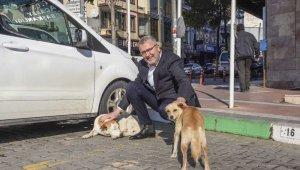 Can dostlarımız Karacabey'de güvence altında - Bursa Haberleri