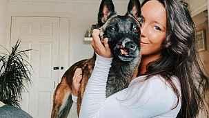 Çinli et tüccarlarının elinden yüzü yırtılmış halde kurtarılan köpek, şimdi İngiltere'nin maskotu