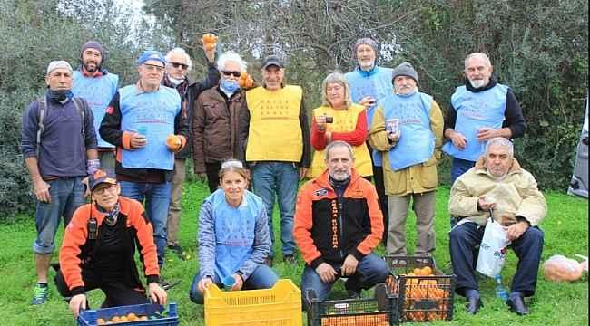 Datça'da 200 kilogram mandalina ihtiyaç sahiplerine dağıtıldı