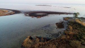 Doğa harikası lagün mikrop saçıyor