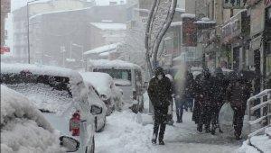 Hakkari'de onlarca köy yolu yeniden ulaşıma açıldı