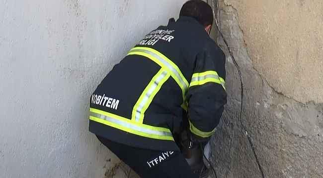 İki bina arasına sıkışan köpek bakın nasıl kurtarıldı?