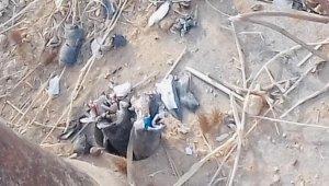 Kablo hırsızı mezarlıkta yakalandı