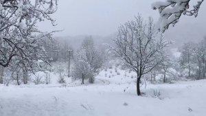 Kar yağışı, Dikmen Yaylası'nda seyrine doyumsuz manzaralar oluşturdu