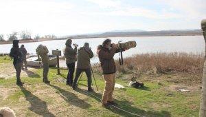 """Kırklareli'nde """"Kış Ortası Su Kuşu Sayımları"""" yapıldı"""