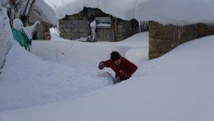 Muş'ta tek katlı evler ve araçlar kara gömüldü