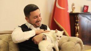 Nevşehir Belediye Başkanı Arı, bir ayağı olmayan sokak kedisini sahiplendi