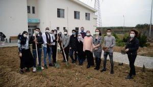 Öğrencilerin 'misafirliği' fidanlarla ölümsüzleştirildi - Bursa Haberleri