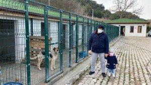 Osmaneli Belediyesi Hayvan Barınağı destek bekliyor