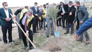Şanlıurfa'daki yeni yerleşim alanlarında ağaç dikim seferberliği