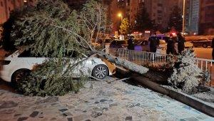 Şiddetli rüzgar çatıları uçurdu, ağaçları yerinden söktü