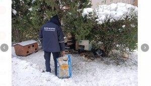 Soğuk ve karlı havalarda sokak hayvanları mamasız ve susuz bırakılmıyor