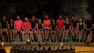 Survivor yarışmacılarının haftalık kazancı belli oldu