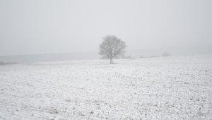 Tekirdağ'ın yüksek kesimleri beyaza büründü