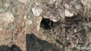 Teröristlerce toprağa gizlenen EYP yapımında kullanılan oksijen tüpü ele geçirildi