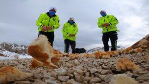 Trafik polisleri hayvanlar için doğaya yem bıraktı