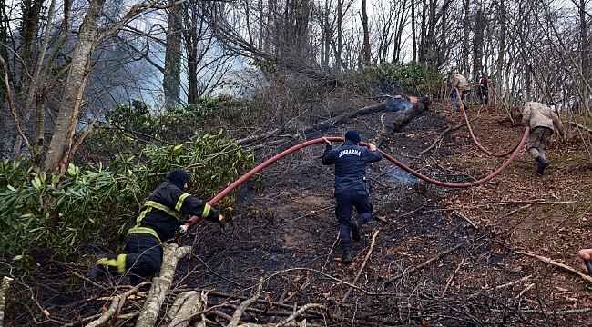 Yanan ormanı itfaiye, Mehmetçik ve vatandaşlar söndürdü