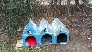 Yunusemre Belediyesi soğuk kış günlerinde sokak hayvanlarını unutmadı