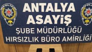Adana'dan Antalya'ya gelen balkon fareleri yakalandı