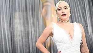 Köpekleri kaçırılan Lady Gaga, geri getirene 500 bin dolar ödül vaat etti