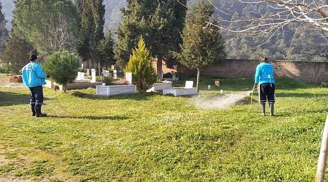 Mezarlıklarda temizlik ve ilaçlama çalışmaları başladı