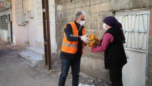Pandemi mağduru vatandaşlara 750 ton patates desteği