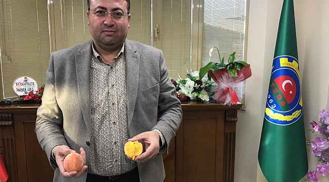 Sezonun ilk turfanda şeftalisi Tarsus'ta hasat edildi