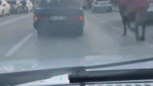 Aracına at bağlayıp caddelerde koşturdu - Bursa Haberleri