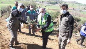 Bakan Kasapoğlu adına memleketi Kula'da hatıra ormanı oluşturuldu
