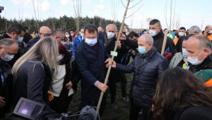 Başkan Akgün, 8 Mart Hatıra Ormanı'na ağaç dikti