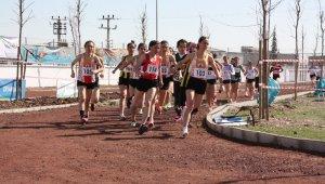 Diyarbakır'da 20 yıl sonra kros şampiyonası düzenlendi