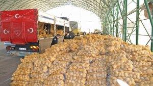 Mudanya Belediyesi'nden ihtiyaç sahiplerine 80 ton patates - Bursa Haberleri