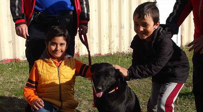 Arama kurtarma köpeğine oy birliğiyle 'Gece' ismi verildi