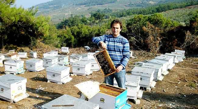 Avukattan organik üretim - Bursa Haberleri