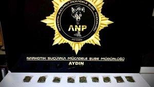 Aydın'da uyuşturucu ile mücadele sürüyor