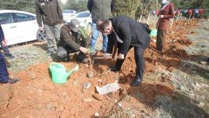 Beyşehir'de şehitler ve gaziler için orman fidanları toprakla buluşturuldu