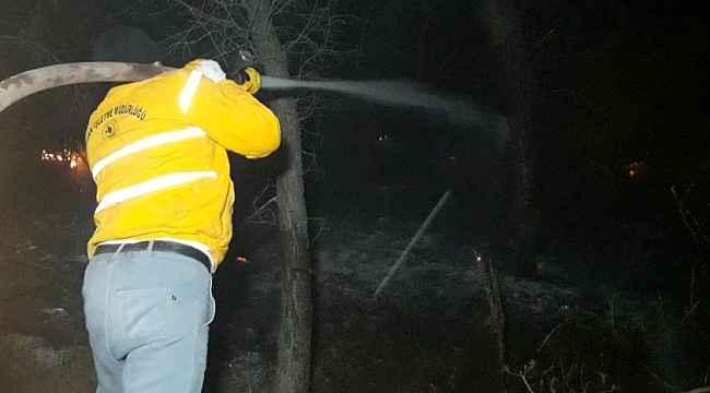 Bozdoğan'daki orman yangınında 2 hektarlık alan zarar gördü