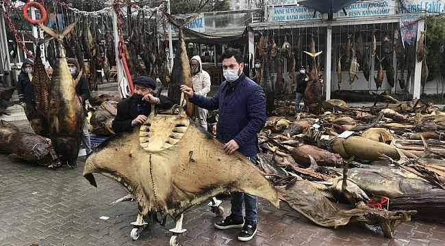 CHP'li belediyenin yıkım kararı aldığı balık müzesinin kurucusu Kenan Balcı, Cumhurbaşkanı Erdoğan'a seslendi