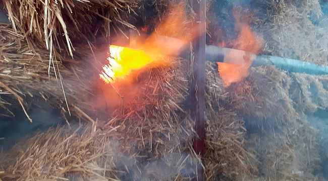 Hayvan çiftliğinde yangın