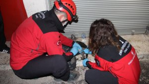 İzmir'de iş yerinde çıkan yangında mahsur kalan bir kişi ile kedisi kurtarıldı