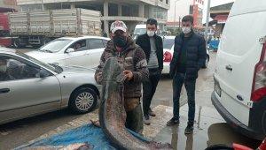 Kendi boyundan uzun balık yakaladı