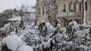 Nisan karı Sivas'ta güzel görüntüler oluşturdu