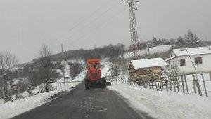Ordu'nun yaylalarında kar