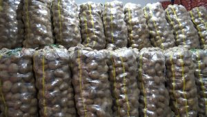 Patates ve soğan hareketliliğinden üretici de memnun tüketici de
